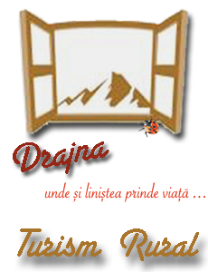 Banner Patrimoniu Drajna